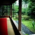 宝泉院緑の盤垣園