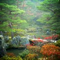 銀閣寺 錦鏡池