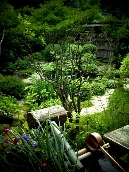 宝泉院 鶴亀庭園