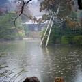 龍安寺 鏡容池