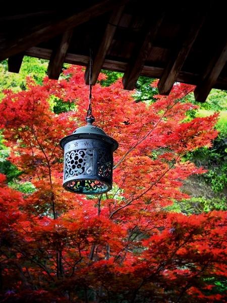 海蔵寺 本堂庇下の吊灯籠
