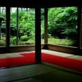 宝泉院 額縁庭園パノラマ