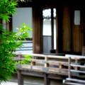 南禅寺 初夏の方丈
