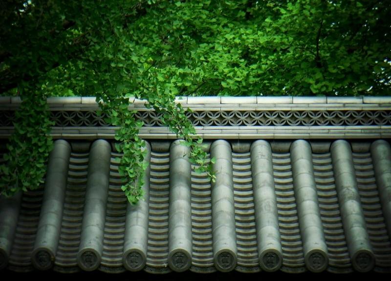 東本願寺にて