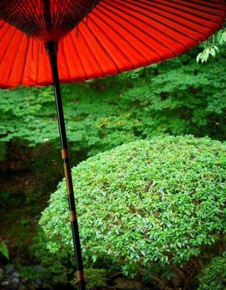 圓満院 宸殿裏庭園