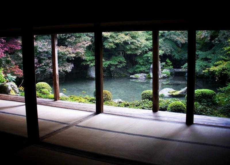 蓮花寺の庭園