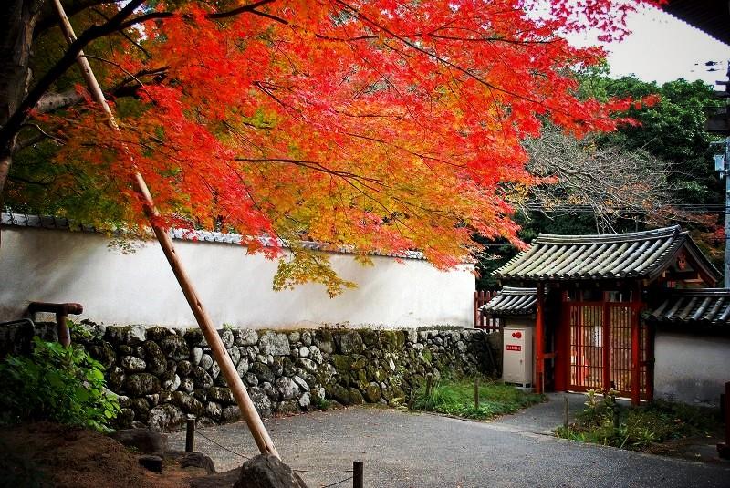 久安寺の紅葉