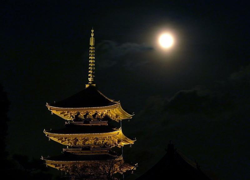 興福寺 五重塔夜景