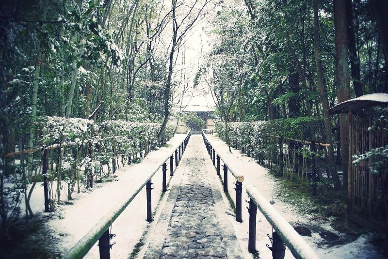 高桐院 雪景色の石畳参道