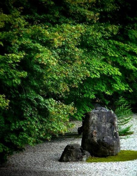 実相院 枯山水庭園