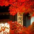 曼殊院 勅使門と紅葉