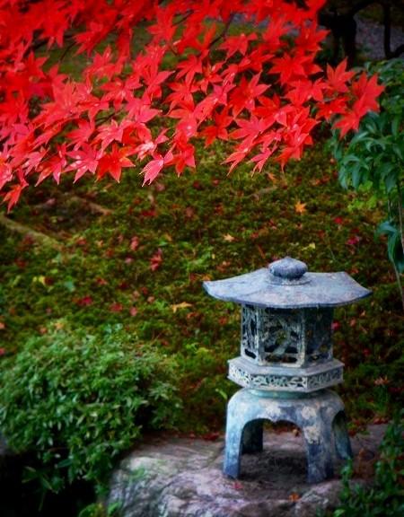 織寶苑:紅葉と石灯籠
