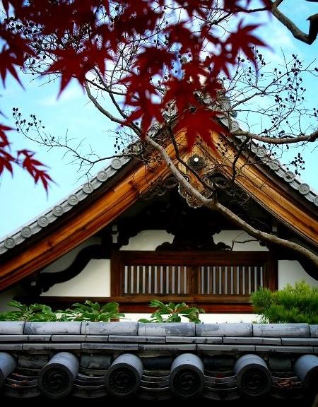 芳春院:秋の本堂