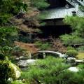 青蓮院庭園