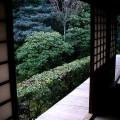 桂春院 思惟の庭