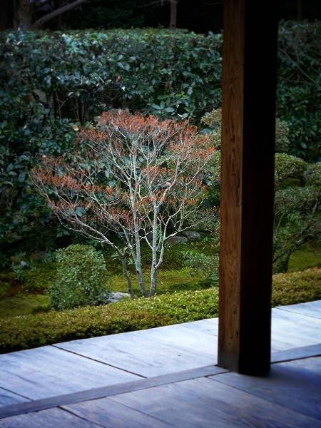 桂春院 真如の庭
