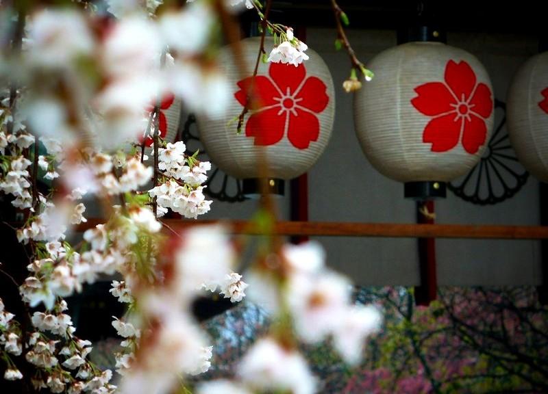 平野神社 東神門にて