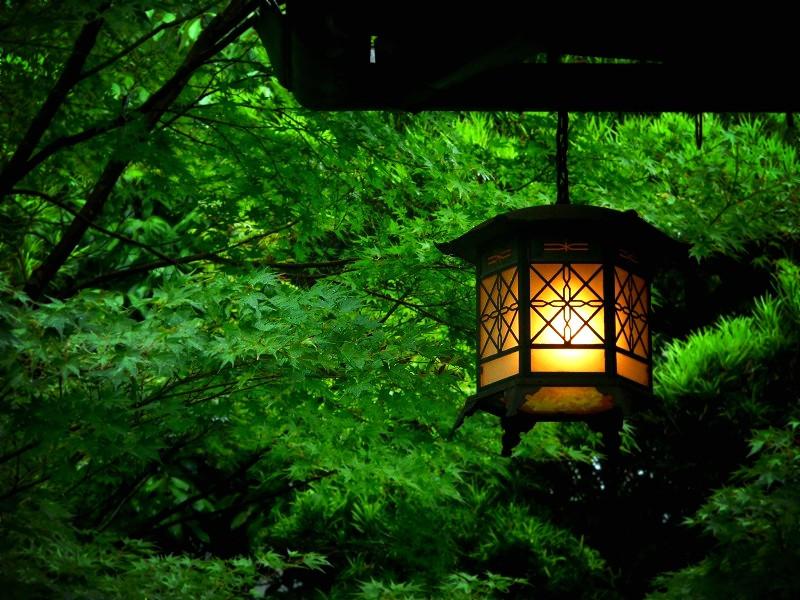 吉城園:軒先の吊灯籠