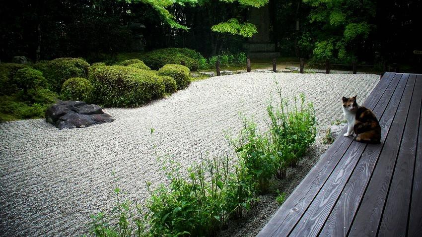 金福寺 庭園