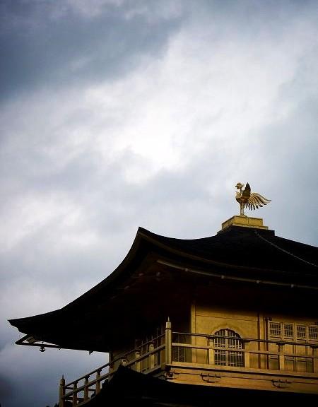 金閣寺 舎利殿の鳳凰