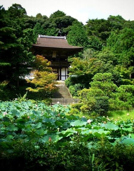 円成寺 名勝庭園