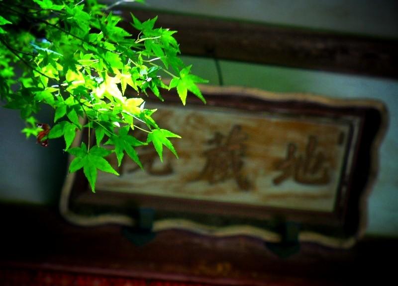 地蔵院(竹の寺) 本堂