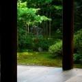 地蔵院(竹の寺) 枯山水