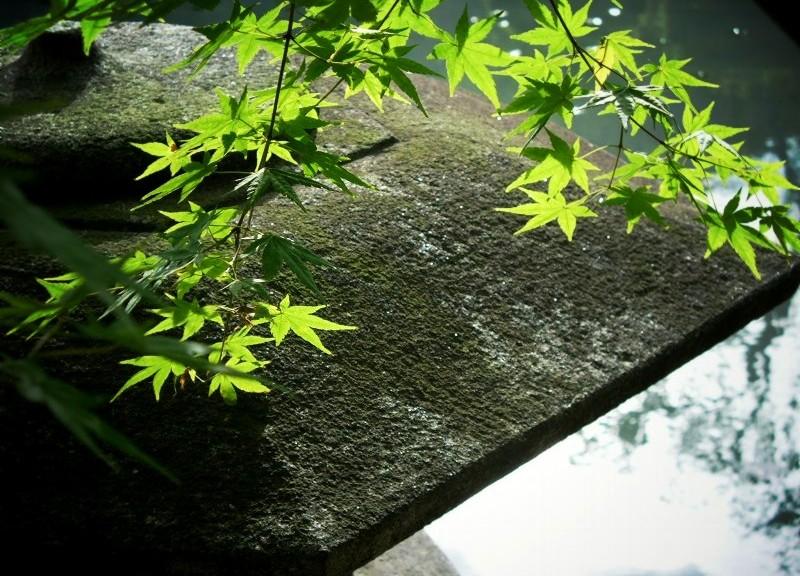 東寺 庭園の石灯籠