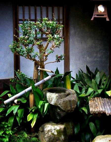 十輪寺 庭園
