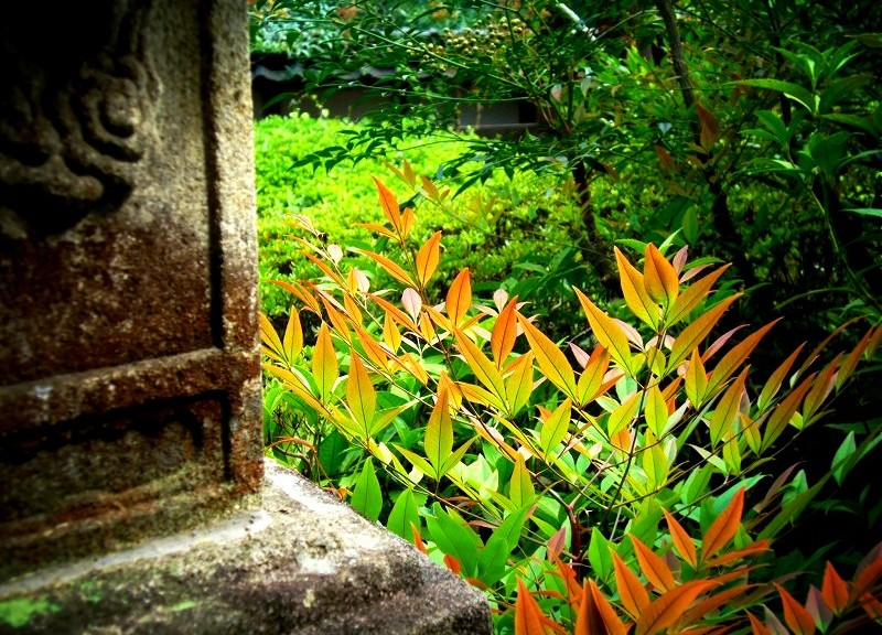 聖林寺 奈良