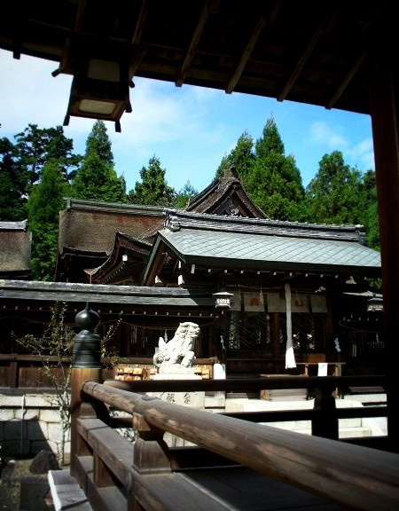 苗村神社の境内
