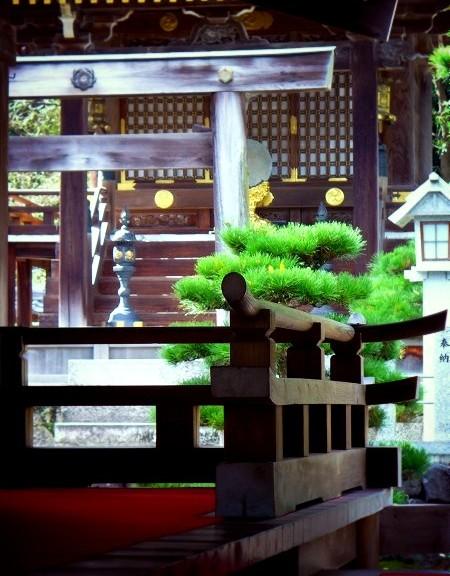 苗村神社 拝殿より