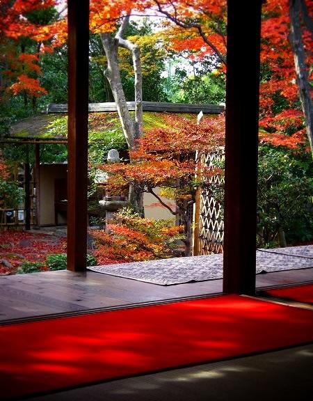 大法院 紅葉の庭園