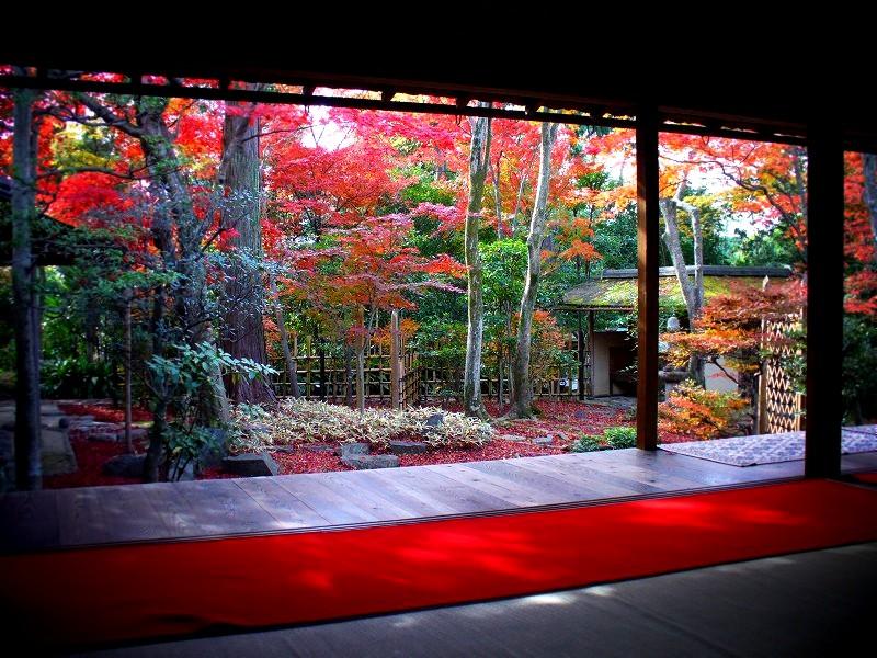 大法院 紅葉の露路庭園