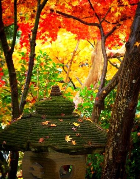 長谷寺 紅葉と石灯籠