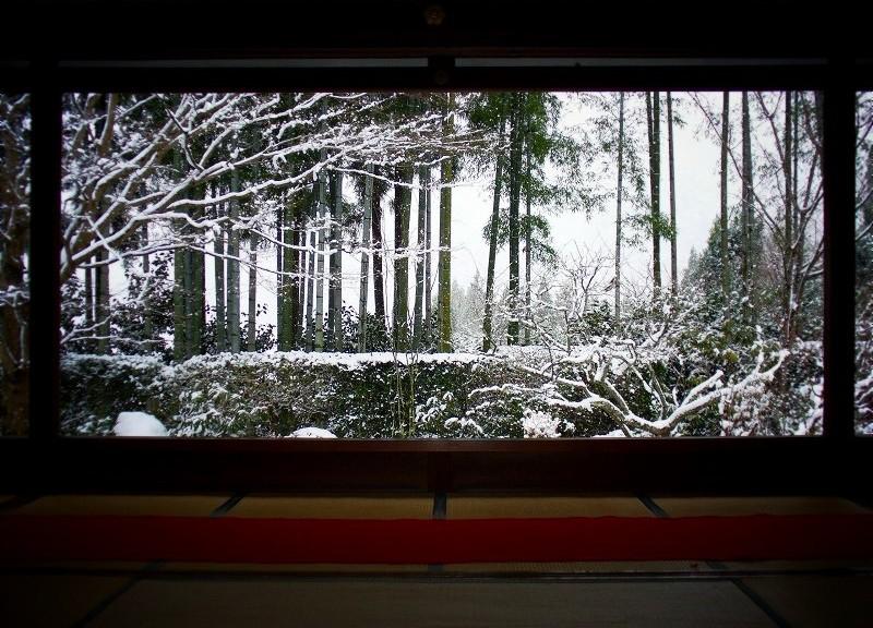 宝泉院 雪の額縁庭園