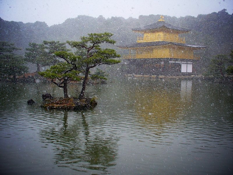 金閣寺 吹雪く金閣2
