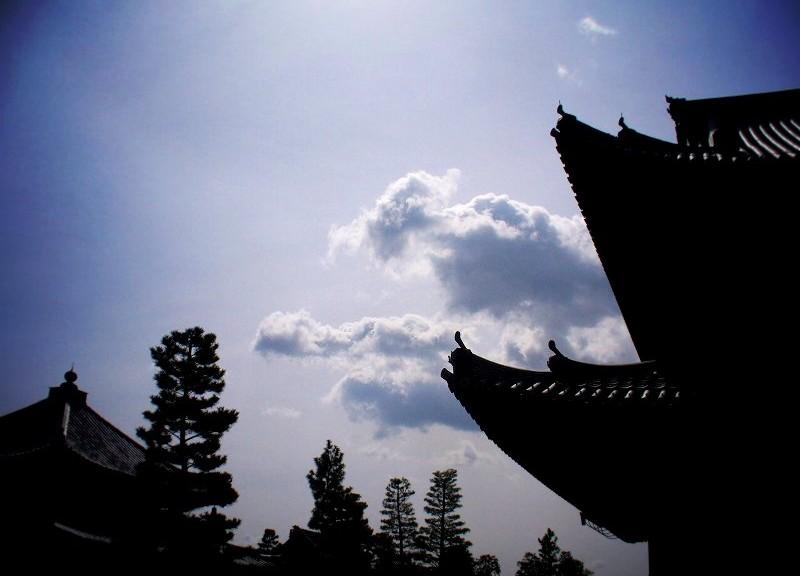 妙心寺 伽藍と春の空