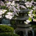 洛翠 石灯籠と桜