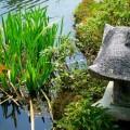 洛翠の庭園