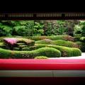 大池寺の蓬莱庭園 サツキ